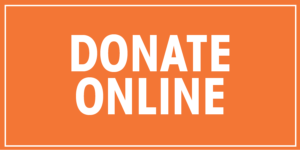 Drive Website Button_Donate Online_Dk. Orange-01